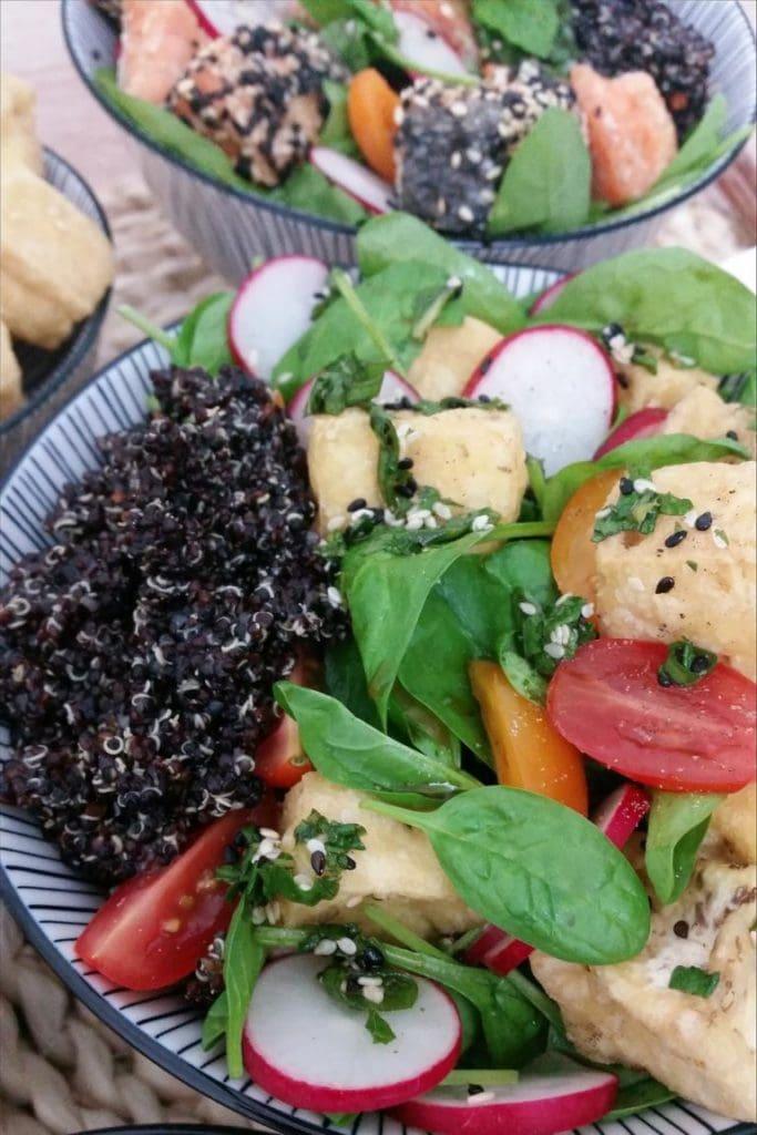 Bunte Buddha Bowl mit schwarzem Quinoa und Tofu